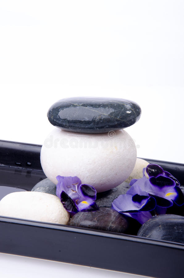 Kamień i kwiat obrazy stock