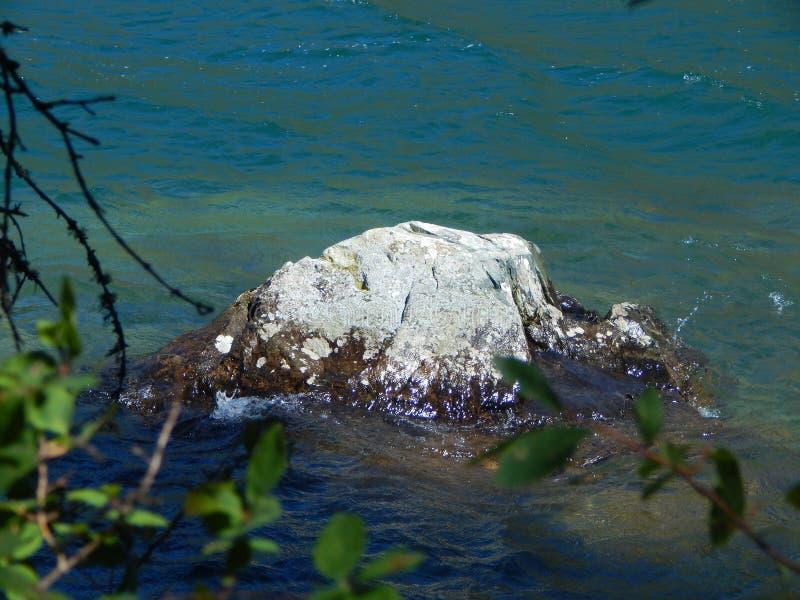 Kamień w glacjalnym jeziorze w pierwszoplanowych gałąź, zdjęcia stock