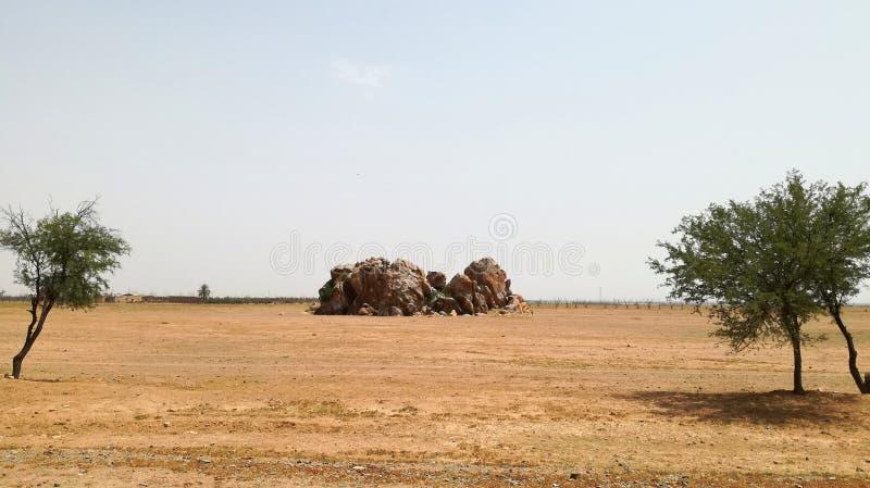 Kamień w pustyni zdjęcie royalty free