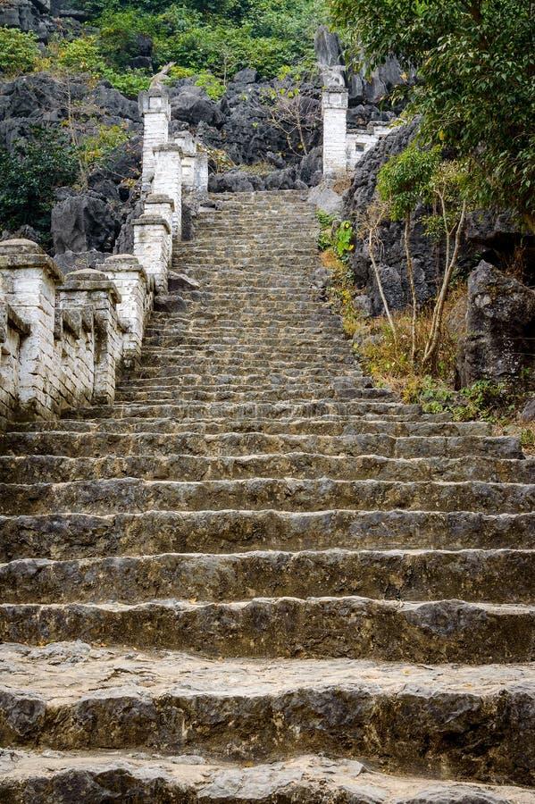 Kamieni kroki w dżungli zdjęcia stock