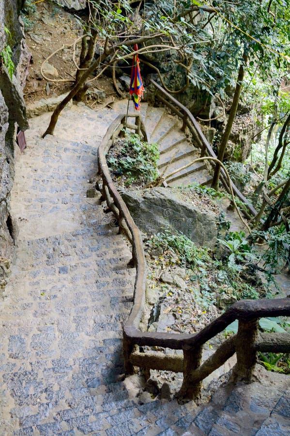 Kamieni kroki w dżungli fotografia royalty free