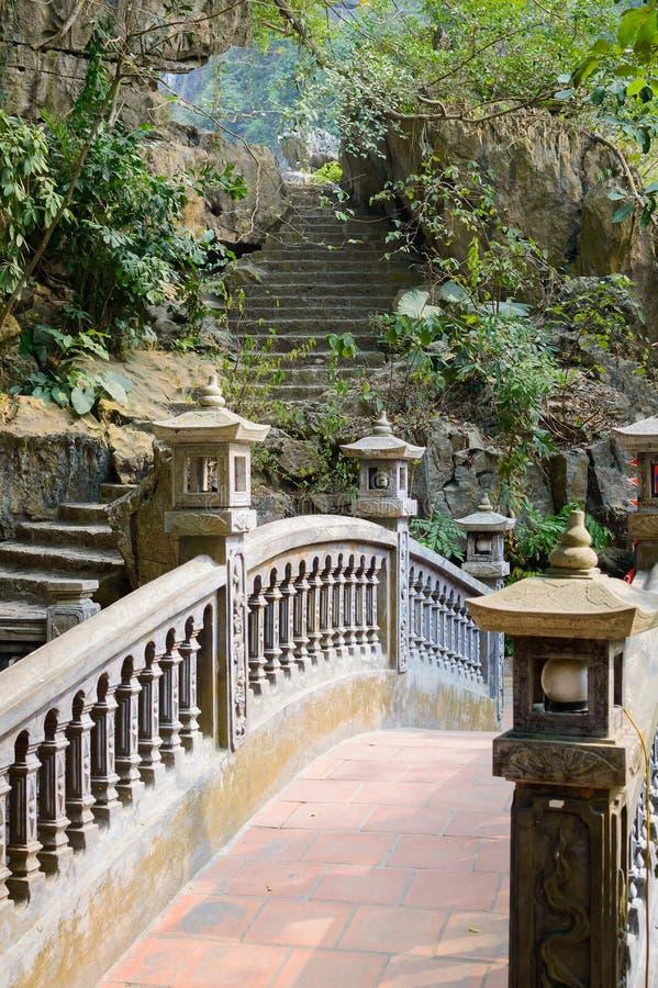 Kamieni kroki w dżungli zdjęcie stock