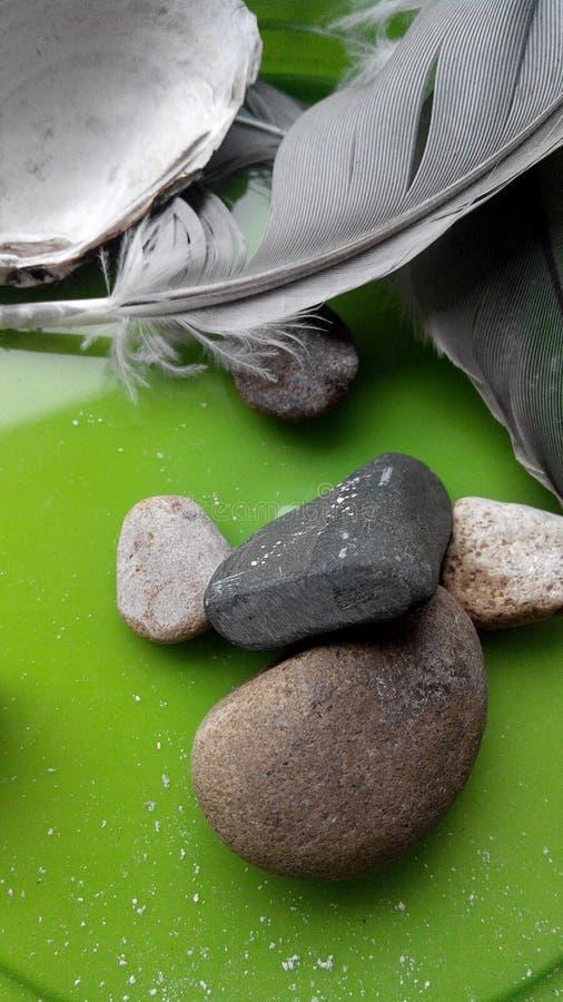 Kamieni piórek perła zdjęcie royalty free
