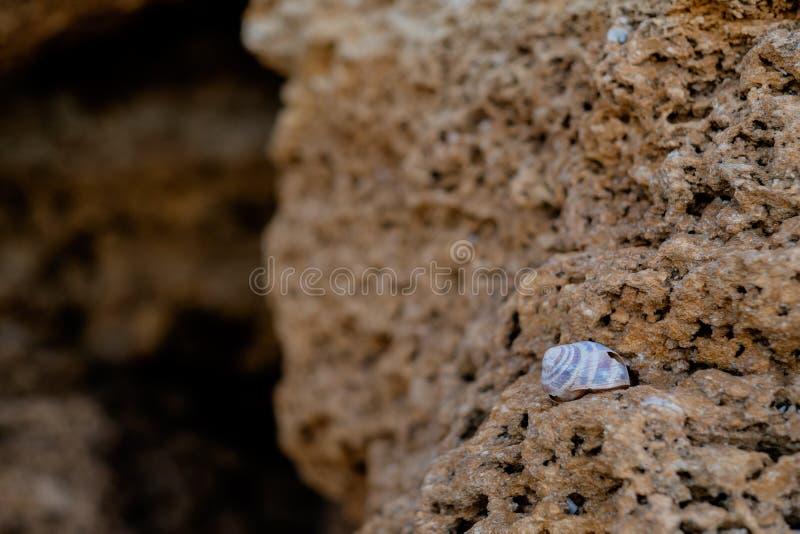 Kamienia tło i tekstura zdjęcie stock