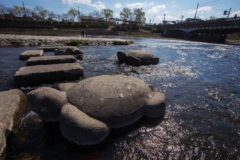 Kamienie czochrający w postaci żółwi i gołąbek obraz stock