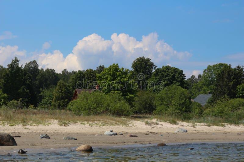 Kamienie na plaży morze bałtyckie zdjęcie royalty free
