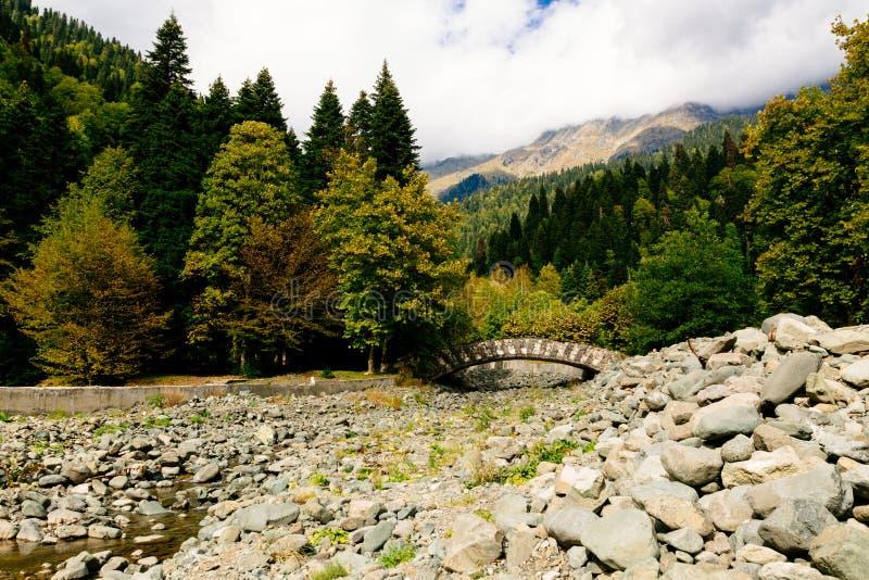 Kamienie przy dnem wysuszona rzeka Kamienny most obraz royalty free