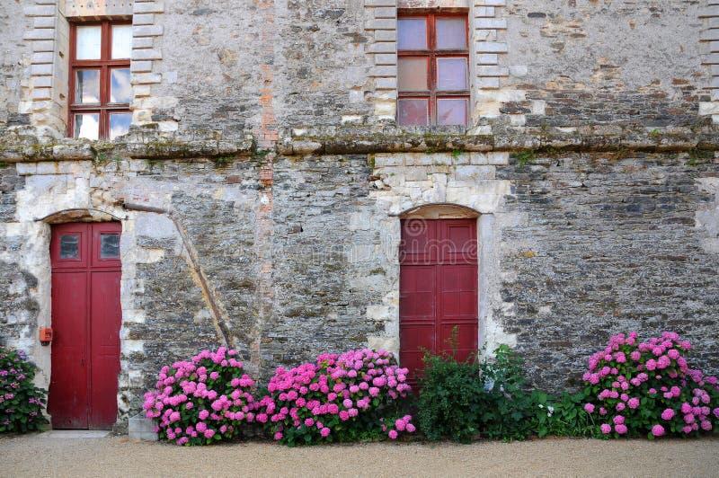 Kamienna ściana, drzwi i hortensia, zdjęcia royalty free
