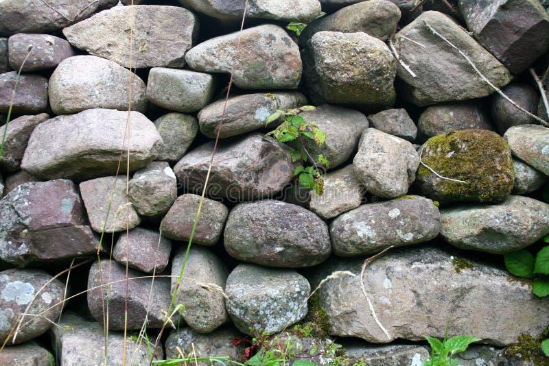 Kamienna ściana na Dingle półwysepie w Irlandia zdjęcia stock