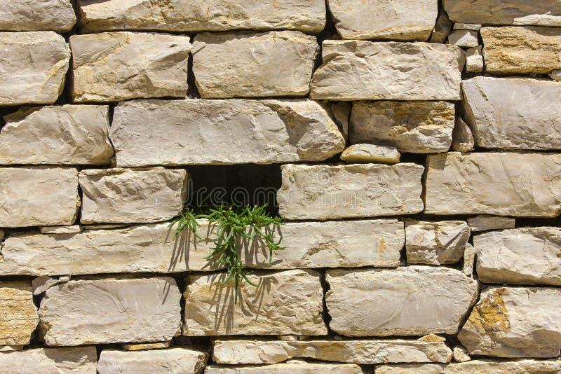 Kamienna ściana z dziurą jako tekstura obrazy stock