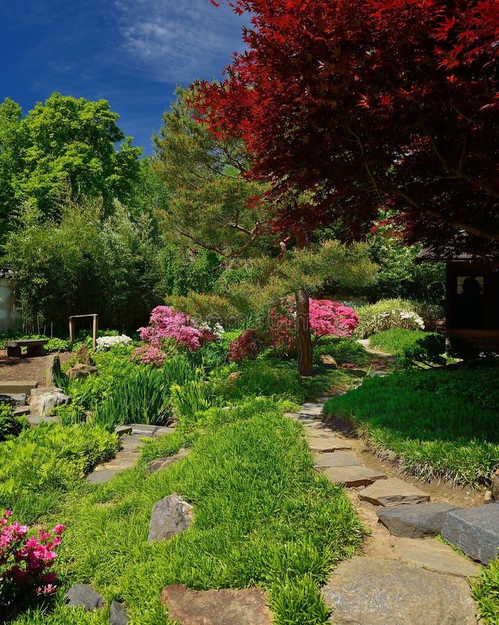 Kamienna ścieżka prowadzi japońskich ogródy zdjęcia royalty free