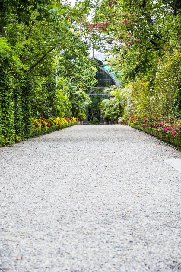Kamienna ścieżka wśród pięknych drzew w ogródzie zdjęcia stock