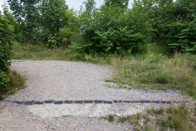 Kamienna ścieżka w parku z zielonymi krzakami w tle obrazy royalty free