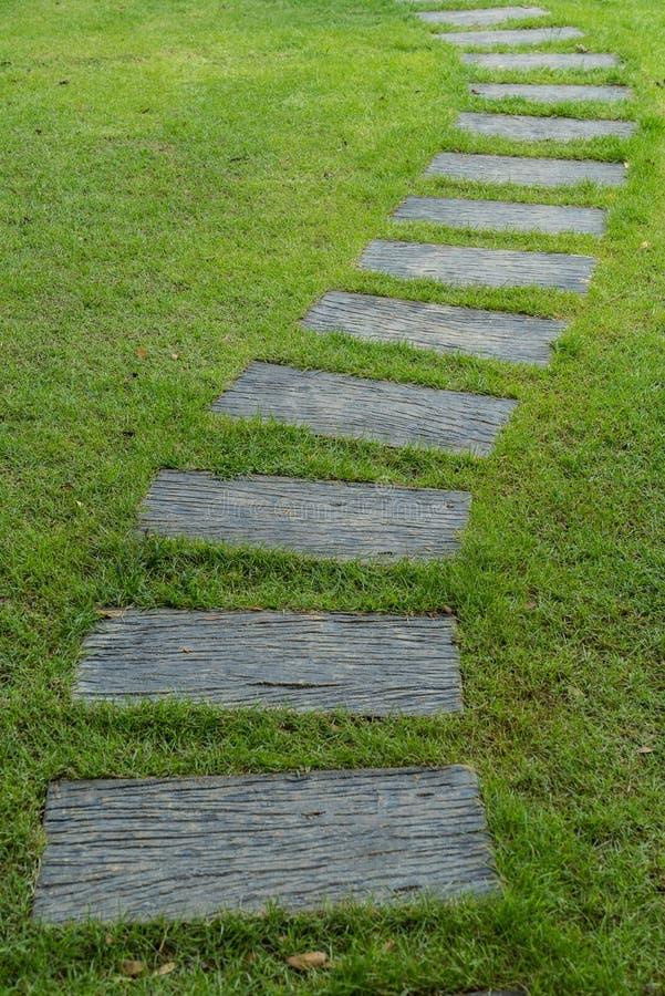 Kamienna droga przemian na zielonej trawie obraz royalty free