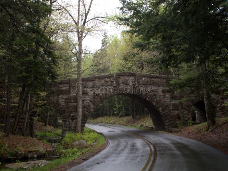 Kamienna jezdnia na Wilgotnym dniu w Acadia parku narodowym i most zdjęcia stock