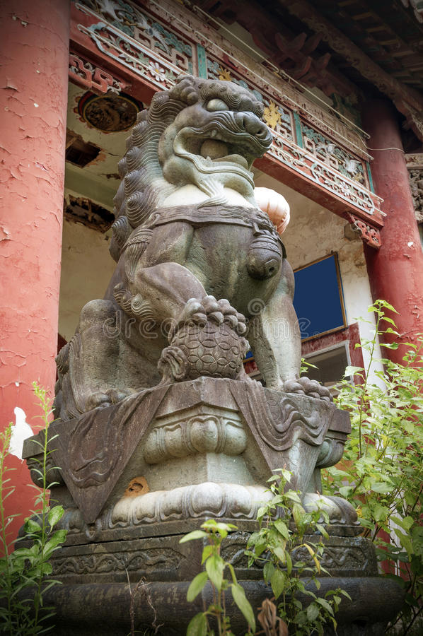 Kamienna lew rzeźba przed świątynią obrazy stock