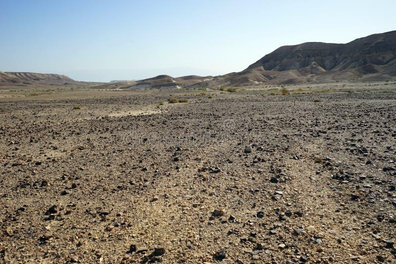 Kamienna pustynia obrazy stock