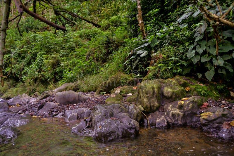 Kamienna skała zdjęcie royalty free
