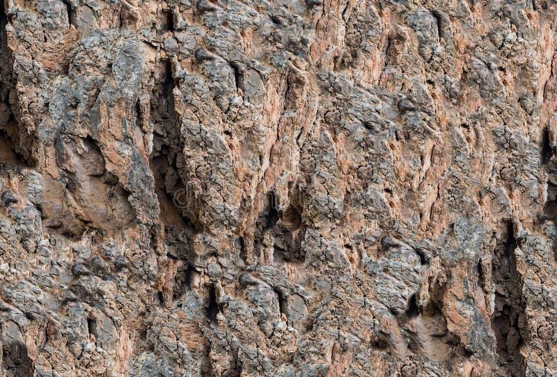 Kamienna tekstura z ogłoszonym wzorem rozpadliny i niegładkość obrazy royalty free