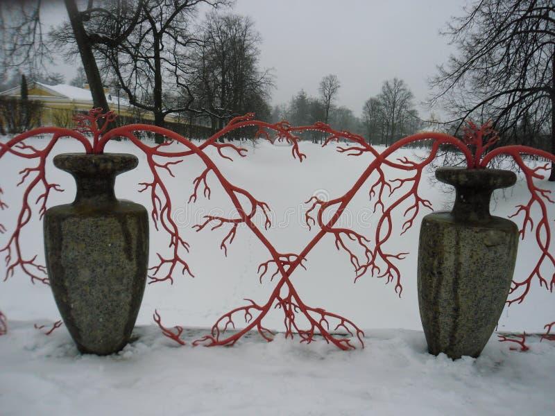 Kamienne wazy w Aleksander parku pushkin St Petersburg Rosja obraz royalty free