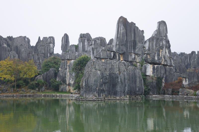 Kamienny las - pierwszy cud świat obrazy stock