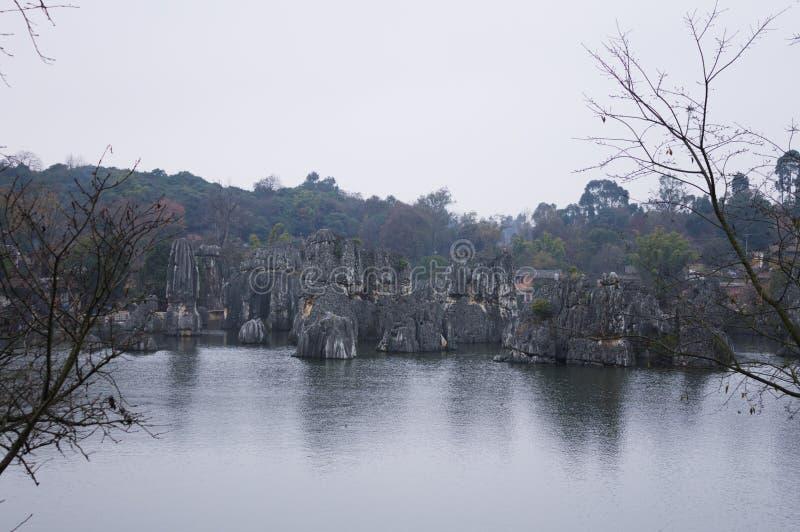 Kamienny las - pierwszy cud świat obraz royalty free