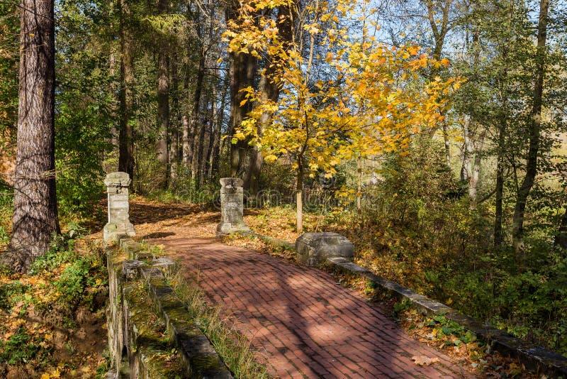 Kamienny most nad wąwozem w jesień lesie zdjęcie stock