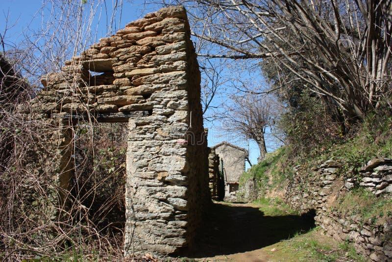 Kamienny widok jako część zniszczonego i bezludnego domu, atakującego zielenią roślinność obraz royalty free