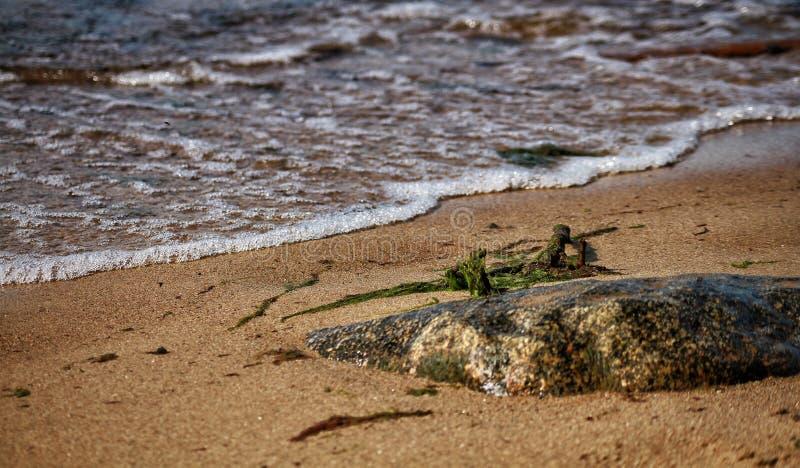 Kamienny wybrzeże Bałtycki obraz stock