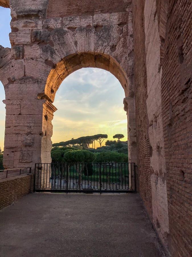 Kamiennych sosen widoczny przelotowy łuk w Colosseum, Rzym, przy słońcem fotografia stock