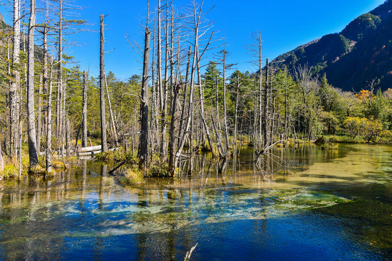 Kamikochi in the autumn royalty free stock image