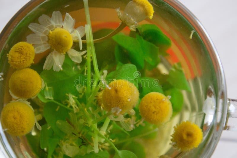 Kamille in einer Schale lizenzfreies stockbild