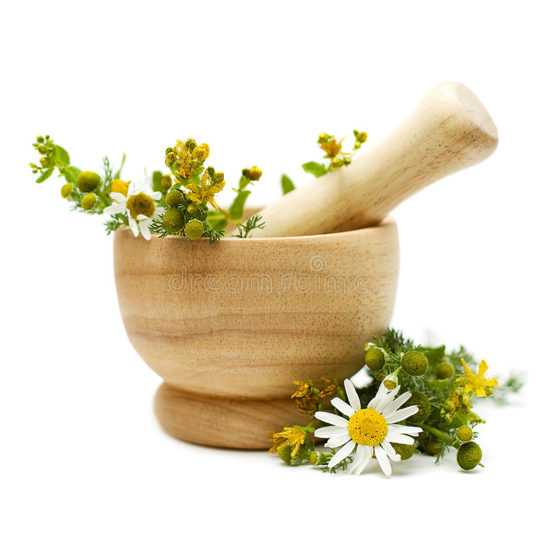 Kamille en tutsan, geneeskundekruiden stock afbeeldingen
