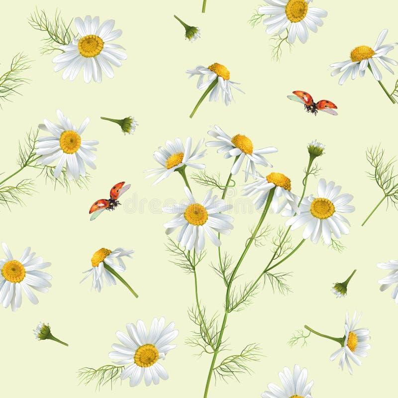 Kamille naadloos patroon stock illustratie