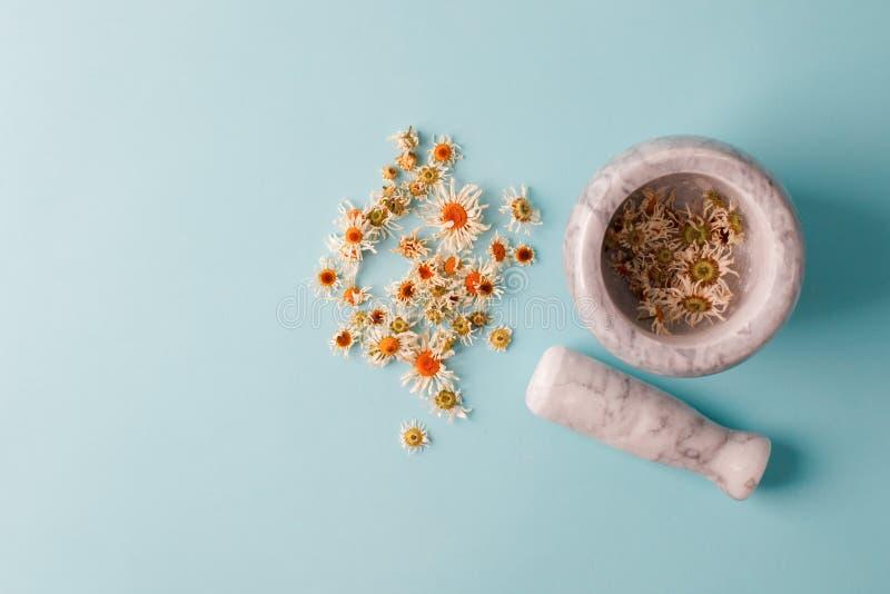 Kamillebloesems, droge kamillebloemen artsenbehandeling en preventie van immuun concept, geneeskunde - mensen, alternatief, stock foto