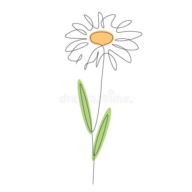 Kamillen-Blume auf weißem Hintergrund Federzeichnungsvektorillustration vektor abbildung