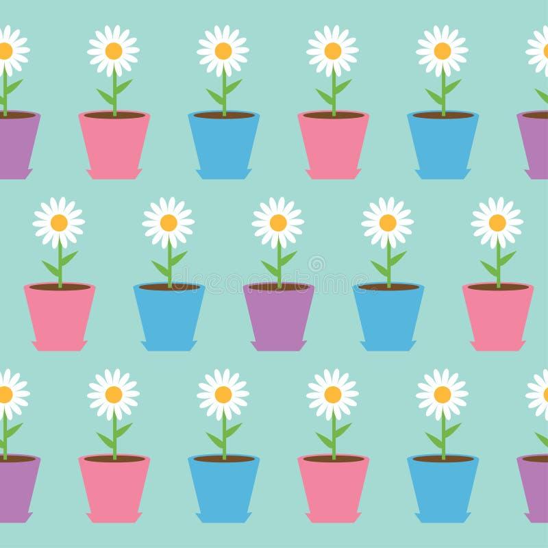 Kamillenblume des weißen Gänseblümchens im Topf Kamillen-nahtloses Muster-Packpapier, Textilschablone Hintergrund für eine Einlad lizenzfreie abbildung
