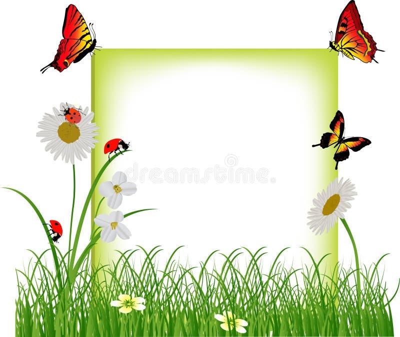 Kamilles en rode insecten in groen gras royalty-vrije illustratie