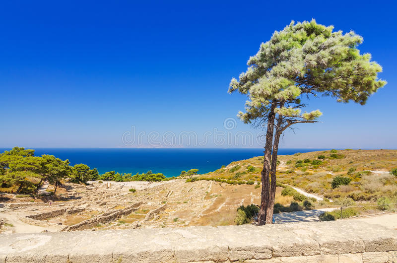 Kamiros ruins with single tree. Beautiful summer landscape of Rhodes island royalty free stock image