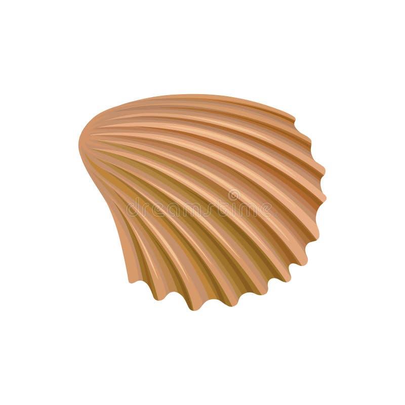 Kamm-Muschelmuschel der Molluske Buntes Marineeinzelteil See- und Ozeanthema Ausführliches Vektorelement für Sommerpostkarte lizenzfreie abbildung