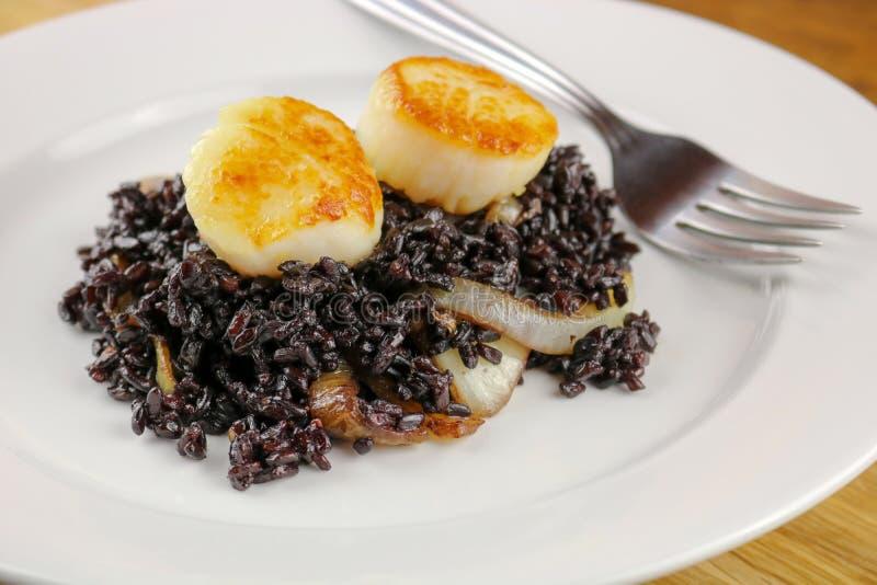 Kamm-Muscheln mit schwarzem Reis und karamellisierten Zwiebeln stockbilder