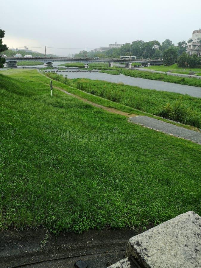 Kamogawa rivier in Kyoto, stroomopwaarts op regenachtige dag stock foto