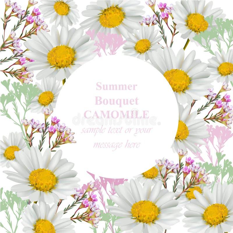 Kamomillen blommar kortet Illustration för vektor för ram för dekor för tappningstilrunda vektor illustrationer