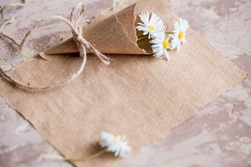 Kamomillherbariumsammansättning på ett hantverkpapper royaltyfria foton