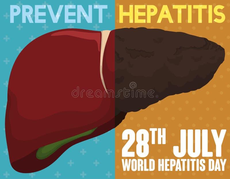 Kampagne, welche die guten und gesunden Gewohnheiten für Leber gegen Hepatitis, Vektor-Illustration fördert vektor abbildung