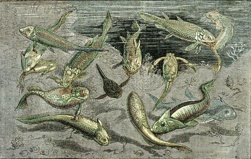 Kampen för existens i Devoniska tider, vintage engring royaltyfri illustrationer