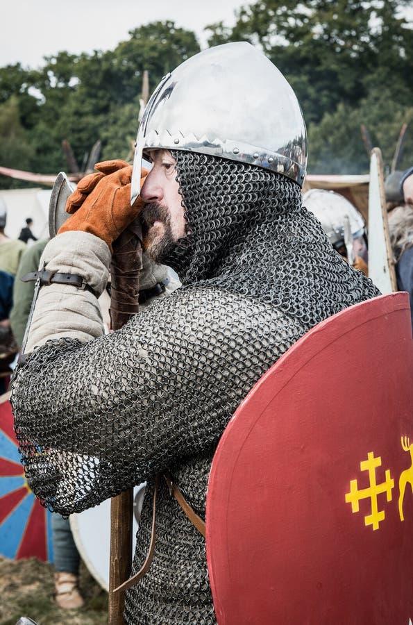 Kampf 1066 von Hastings lizenzfreie stockfotografie
