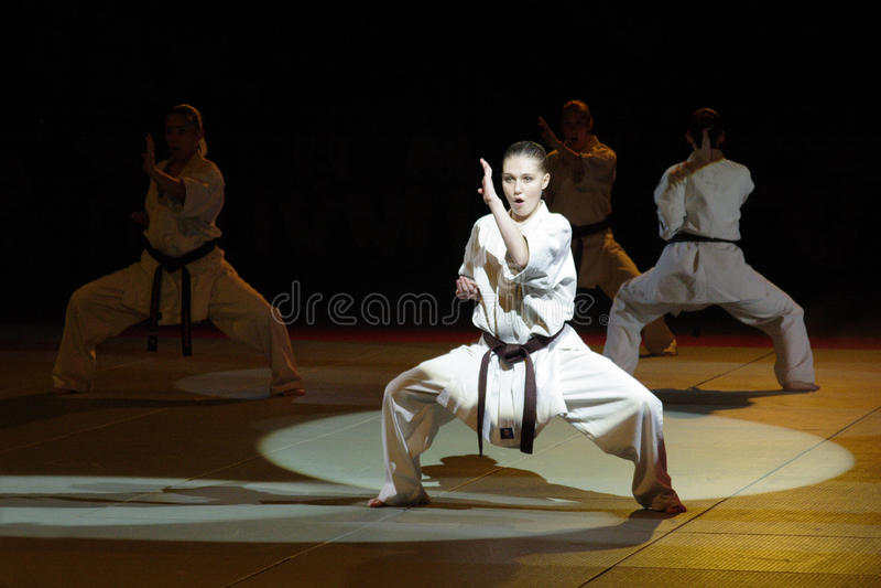 Kampfkunstfestival in Russland lizenzfreies stockfoto