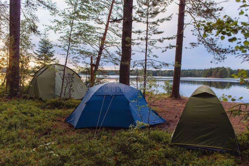 Kampierender Tourismus und Zelt der Abenteuer unter der Ansichtwaldlandschaft nahe dem Wasser im Freien im Sommerabend- und -sonn lizenzfreie stockfotografie