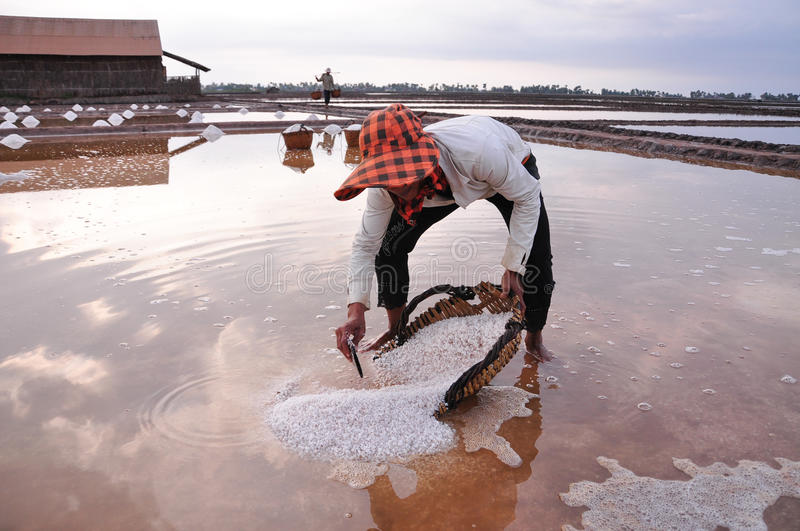 Salt field in Kampot, Cambodia. Kampot, Cambodia - Jan 25, 2012. A woman working on salt field in Kampot, Cambodia stock photo